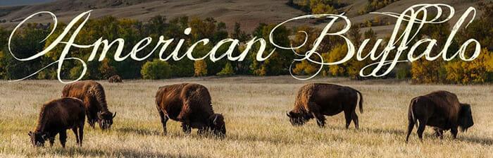 Buffalo Boots Men - American Buffalo
