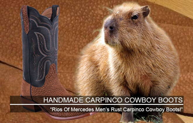 Carpinco Cowboy Boots - Featured Image