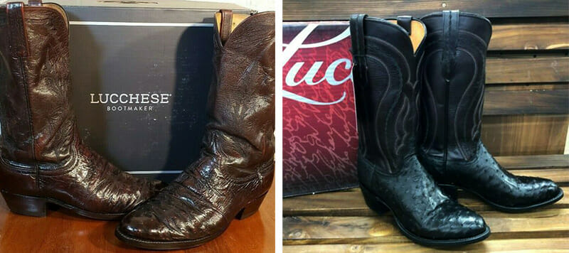 Men's Lucchese Full Quill Ostrich Boots
